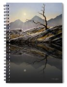 Still Standing Reflections Spiral Notebook