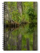 Stillness Swamp Spiral Notebook