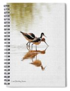 Stilt And Avocet Eat Together Spiral Notebook