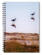 Stilt Birds Spiral Notebook