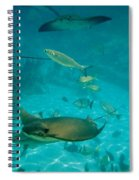 Stingray And Fish Spiral Notebook