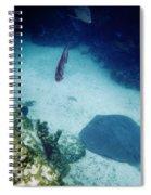 Stingray On The Bottom Spiral Notebook