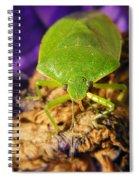 Stinky  Spiral Notebook