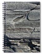 Stone Art Spiral Notebook