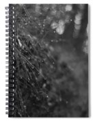 Stone Forest Trail Spiral Notebook