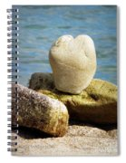 Stone Heart  Spiral Notebook