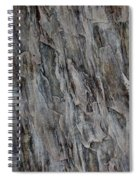 Stone I Spiral Notebook