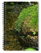 Stone Mouth Spiral Notebook
