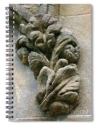 Stone Ornament 2 Spiral Notebook