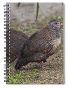 Stone Partridges Spiral Notebook
