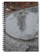 Stone Pool Angel Spiral Notebook