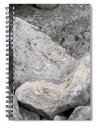 Stone Tooth Spiral Notebook