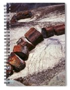Stone Trees - 336 Spiral Notebook
