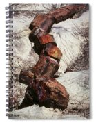 Stone Trees - 337 Spiral Notebook