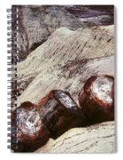 Stone Trees - 360 Spiral Notebook