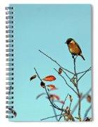 Stonechat Spiral Notebook