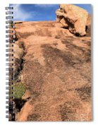 Stoned Leap Frog Spiral Notebook