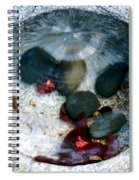 Stones And Fall Leaves Under Water-43 Spiral Notebook