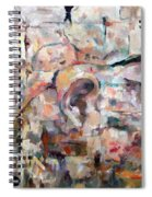 Stones With A Heart   Ears Of The Wall Spiral Notebook