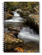 Stony Creek Falls Spiral Notebook