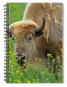 Stopped To Smell The Flowers Spiral Notebook