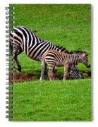 Stopping For A Drink Spiral Notebook