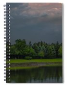 Storm Clouds And Trees Spiral Notebook