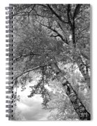 Storm Over The Cottonwood Trees - Black And White Spiral Notebook