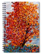 Stormlight Spiral Notebook