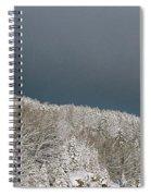 Storm's A'brewin' Spiral Notebook