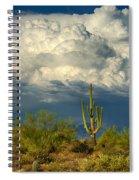 Stormy Desert Skies  Spiral Notebook