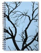 Stormy Trees Spiral Notebook