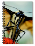 Straight On For You Spiral Notebook