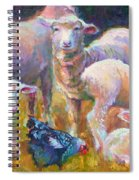 Stranger At The Well - Spring Lambs Sheep And Hen Spiral Notebook