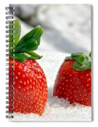 Strawberries On Ice  Spiral Notebook