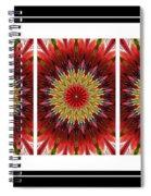 Strawberry Explosion Triptych - Kaleidoscope Spiral Notebook