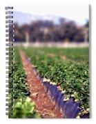 Strawberry Field Spiral Notebook
