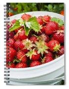 Strawberry Harvest Spiral Notebook