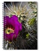 Strawberry Hedgehog  Spiral Notebook