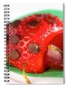 Strawberry Ladybug Spiral Notebook