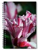 Strawberry Swirled Spiral Notebook