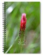 Strawberry Wildflower Spiral Notebook
