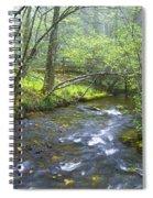 Stream Below Amicalola Falls Spiral Notebook