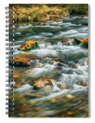 Stream Fall Colors Great Smoky Mountains Painted  Spiral Notebook