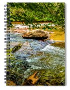 Stream II Spiral Notebook