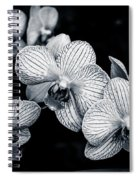 Stream Of Orchids Spiral Notebook