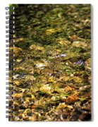 Stream Water Spiral Notebook