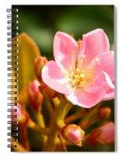 Street Flower Spiral Notebook