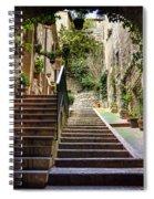 Streets Of Pisa Spiral Notebook