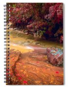 Striated Creek Spiral Notebook